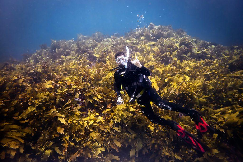 Warren diving North Rock Gutters
