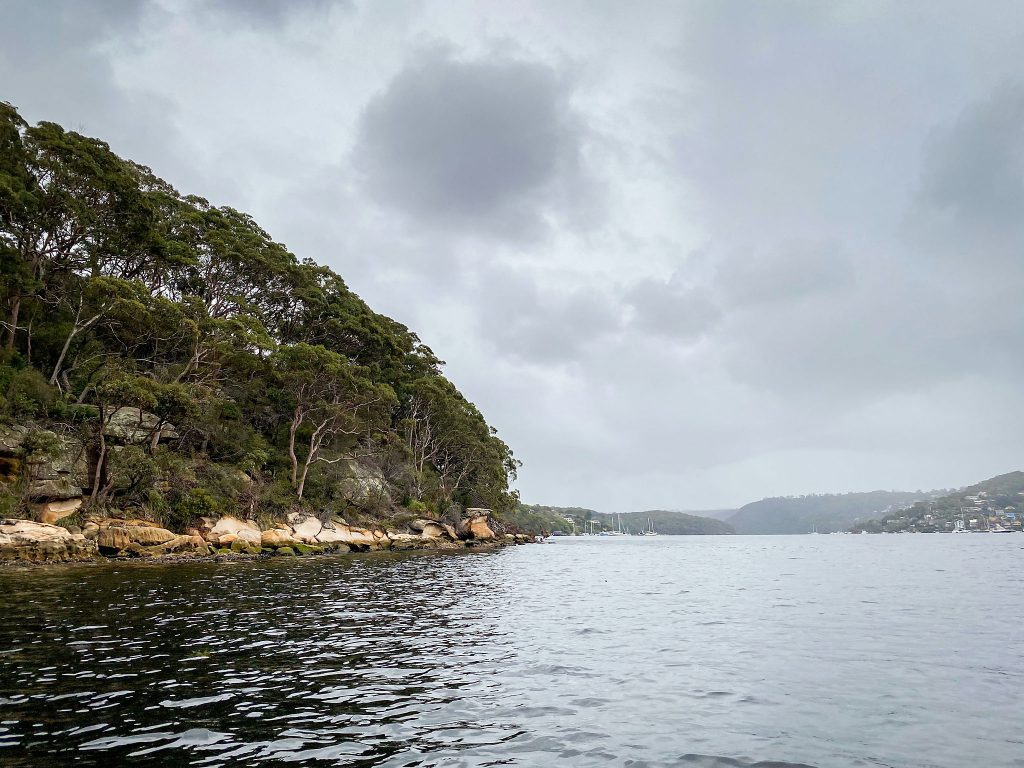 A Middle Harbour headland