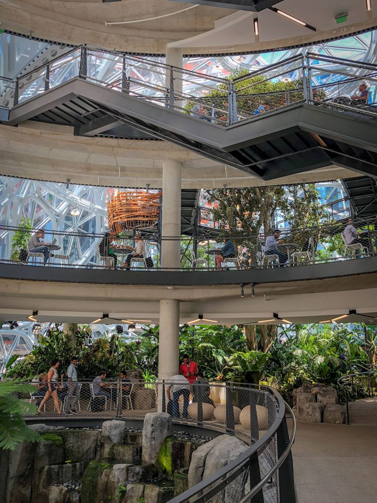Another shot inside the Amazon Spheres