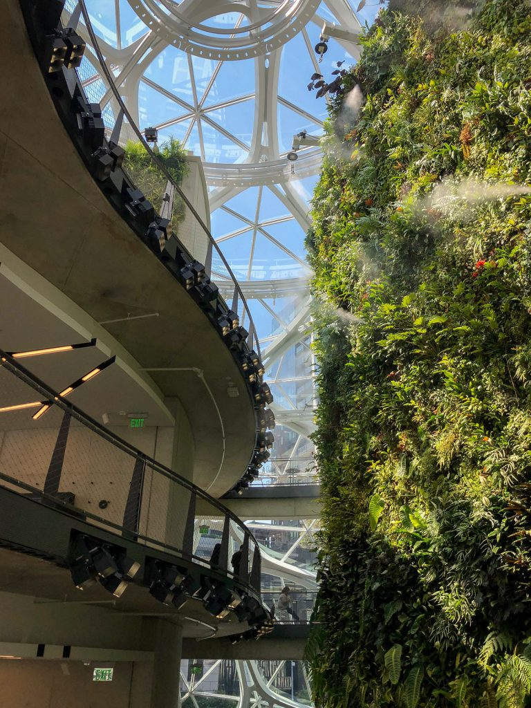 The living wall in the Spheres