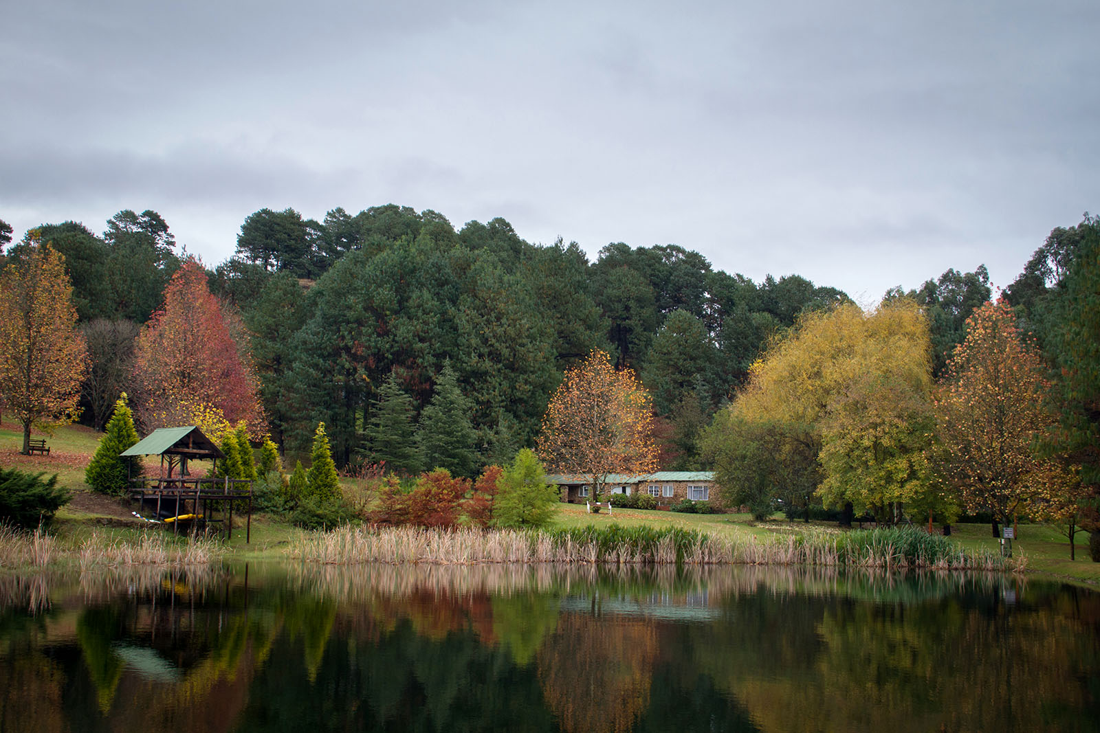 View of Faith Cottage across the small bass dam at Meadow Lane